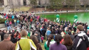 "Crowds gather for the for the ""greening"" of the canal"